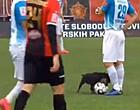 Foto: Ongewone veldbestormer legt eerste klasse-match stil (🎥)