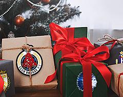 Dé ideale transfer die elk team onder de kerstboom wil
